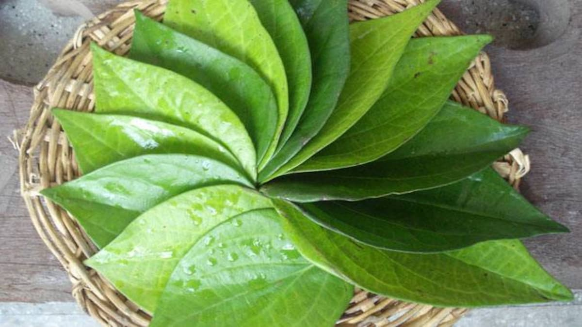 Betel leaves (Pann) 3pc