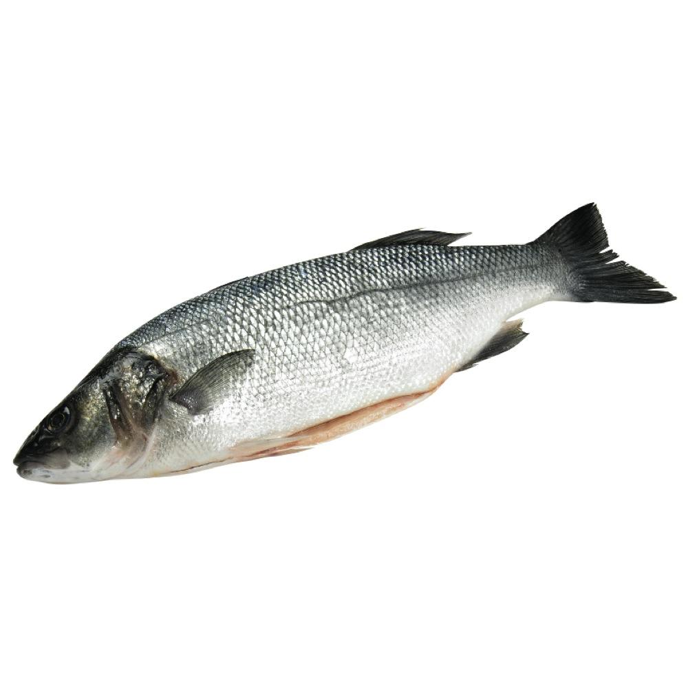 Sea bass 1lb